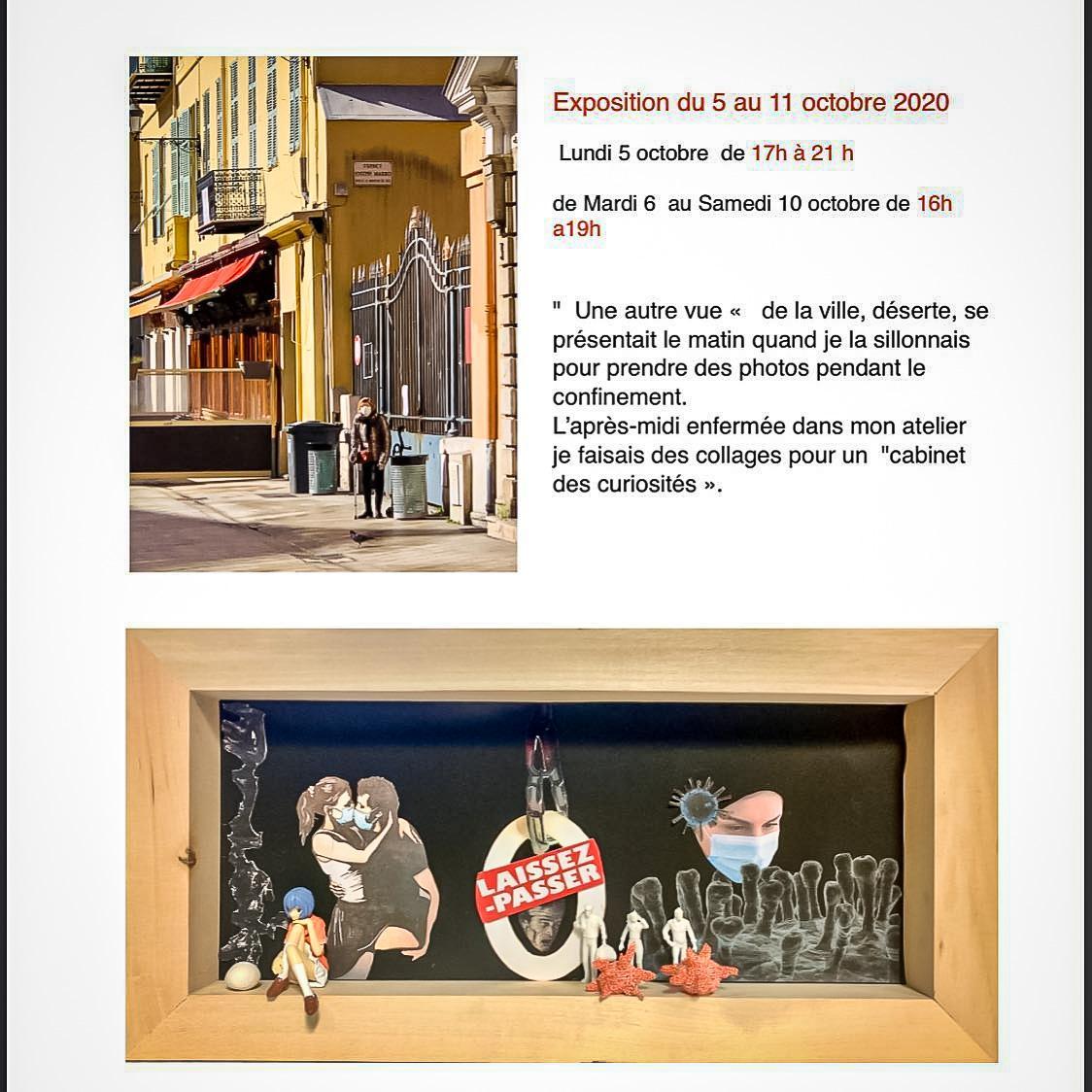 Exposition Cabinet des curiosités - Galerie des Dominicains - Siva Usta
